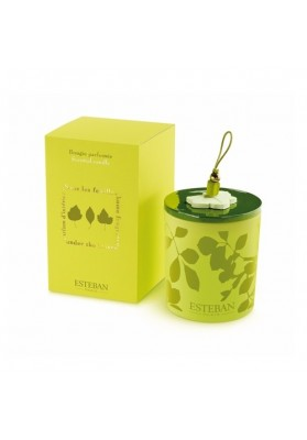 Deco candle rechargeable under the leaves